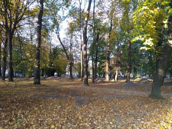 Trwa rewitalizacja parku przy ul. Dąbrowskiego [FOTO] - Aktualności Rzeszów - zdj. 19